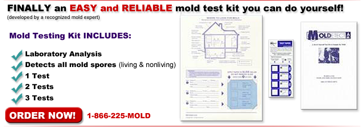 Finally an easy and reliable mold test kit